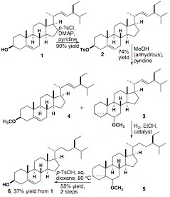 English: Synthesis of Sitosterol